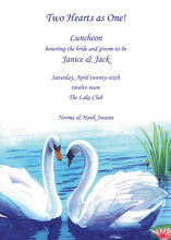 Beautiful White Swans By The Lake Invitation