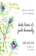 Elegant Peacock Wisps Invitation