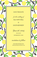Sunny Vine Borders Invitation