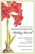 Celebration Corner Amaryllis Invitation