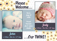 Double Daisies Double Babies Photo Cards