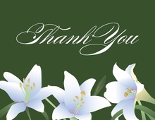 Elegant Spring Velvet Lilies Thank You Cards
