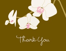 Featuring Rich Blooming Orchid Thank You Cards