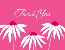 Contemporary Pink Leaning Daisies Thank You Cards