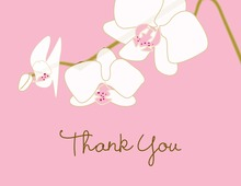 Blooming Orchid Pink Thank You Cards