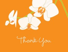 Blooming Orchid Orange Thank You Cards
