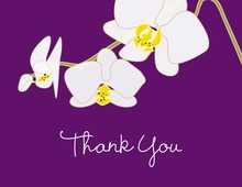 Blooming Orchid Purple Thank You Cards