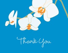 Blooming Orchid Blue Thank You Cards