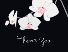 Blooming Orchid Black Thank You Cards