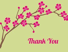 Classic Cherry Lime Thank You Cards