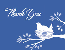Bird on nest Blue Thank You Cards
