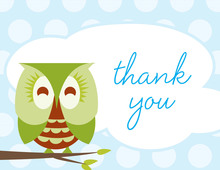 Sleepy Owl Blue Thank You Cards