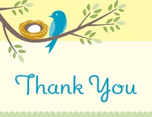 Nesting Boy Thank You Cards