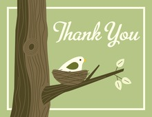 Nest Green Thank You Cards