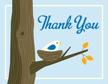 Nest Blue Thank You Cards