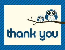 Blue Hoot Two Wide-Eyed Owls Thank You Cards