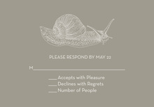 Sophisticated Snail Gray RSVP Cards