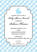 Cute Blue Bunny Shower Invitations