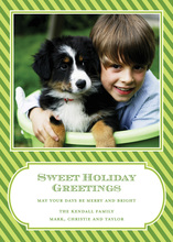 Perfect Diagonal Green Stripes Photo Cards