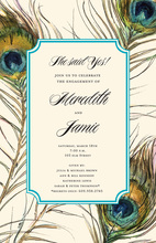 Trendy Feathers Border Invitations