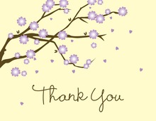 Blossoms Way Thank You Cards