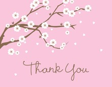 Classic White Blossoms Thank You Cards
