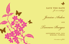 Butterfly Fly Away Invitations