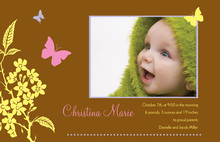 Butterfly Baby Photo Cards