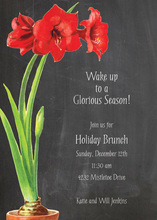 Elegant Pot Amaryllis Invitation