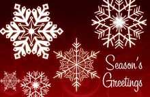 Holiday Special Snowflakes Folded Greeting Cards