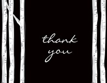 Trees At Night Time Thank You Cards