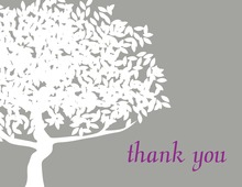 Big Lovely Silhouette Tree Thank You Cards