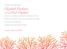 Pretty Pink Coral Beach Invitations