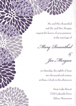 Purple Chrysanthemums Invitation