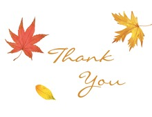 Fall Leaves Thank You Note