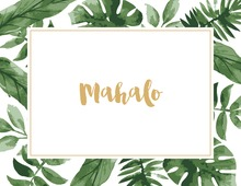 Watercolor Tropics Mahalo Thank You Cards